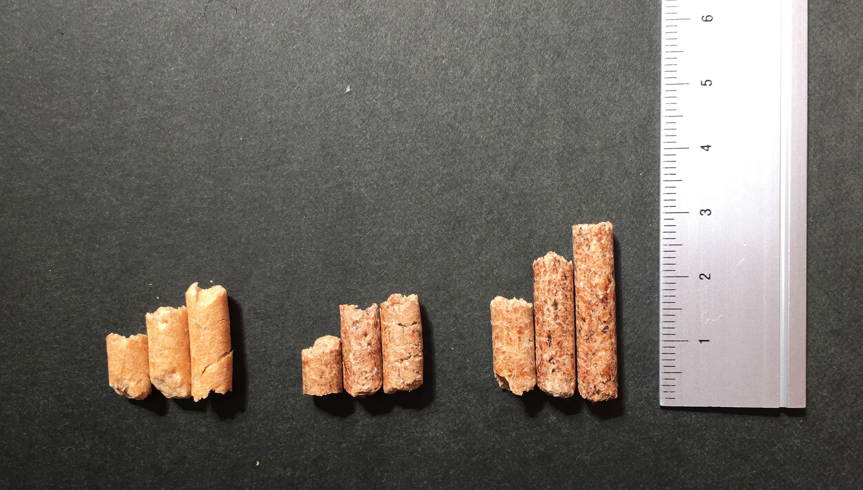 ペレット 3種類 長さ比較 cut