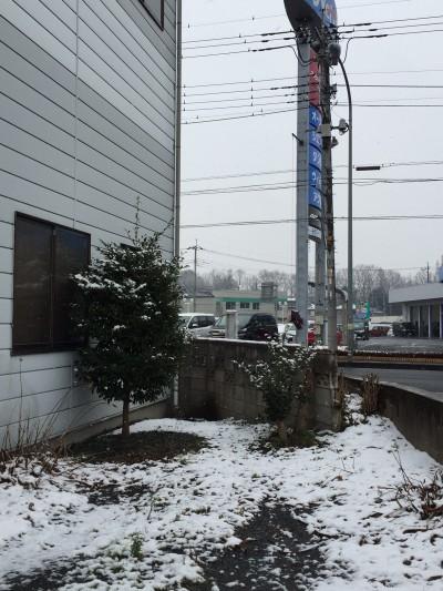 初雪 栃木県小山市
